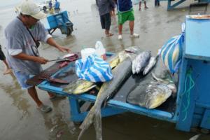 Jeder Fischer präsentiert seinen Fang